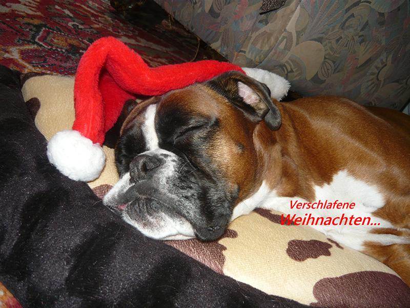 Weihnachtsfeier 2011 1