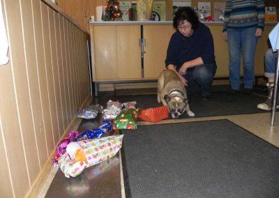 Hunde-Weihnacht 2016 12